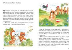 PUS, O ciekawskim kotku, str 2